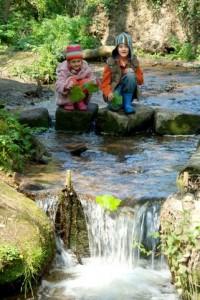 Family Nature Holidays